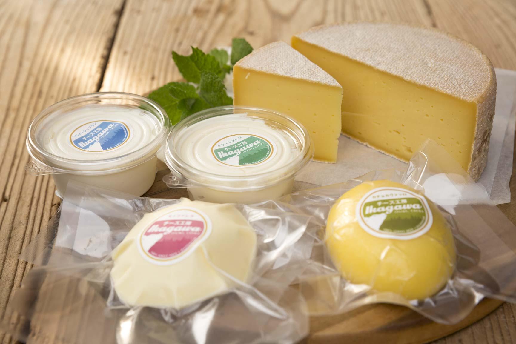 チーズ工房IKAGAWAのチーズ